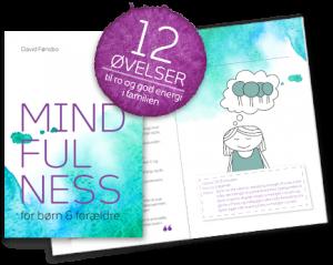 mindfulness_bog-300x239